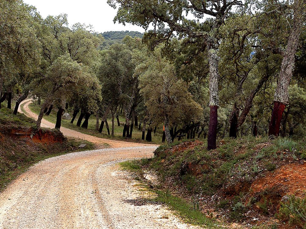 El Jerez Rural