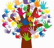 Entidades en las que hacer Voluntariado