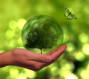 Plantilla Denuncia Medio Ambiental