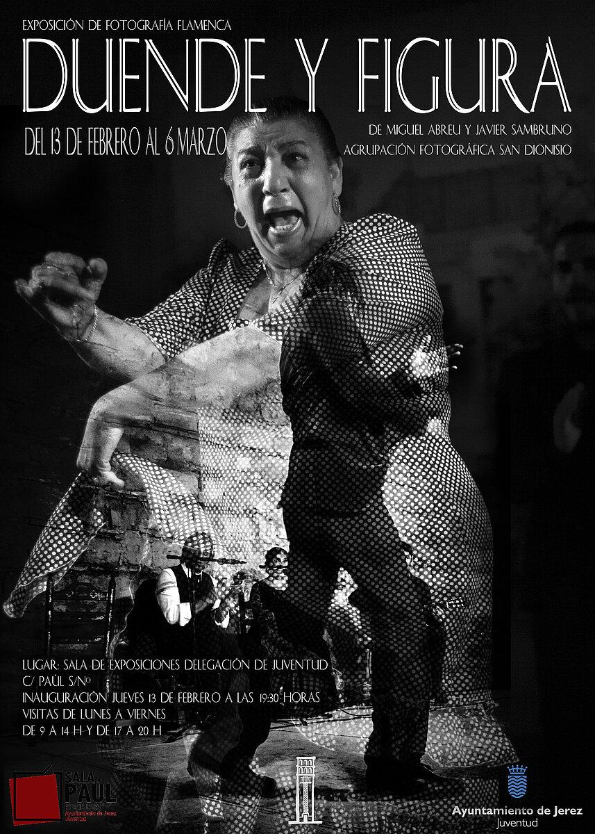 Exposicion Flamenco