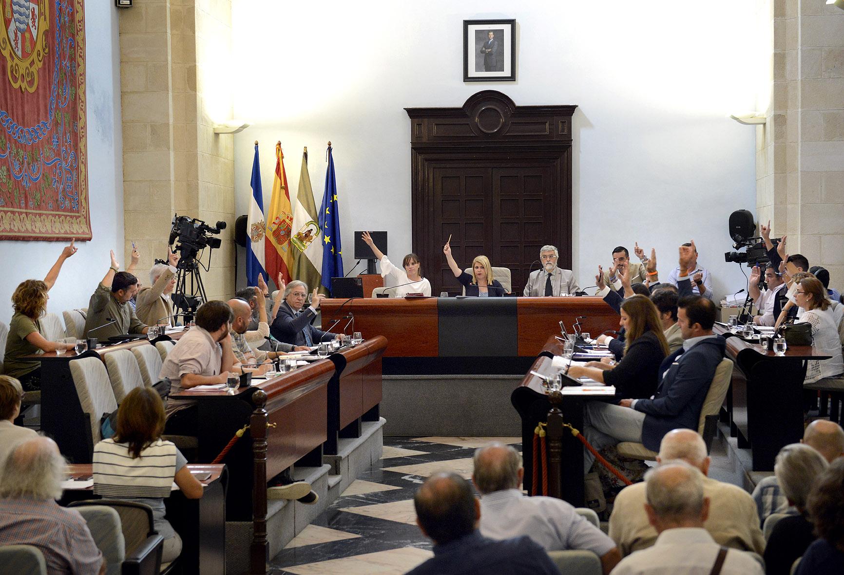 La alcaldesa durante el pleno
