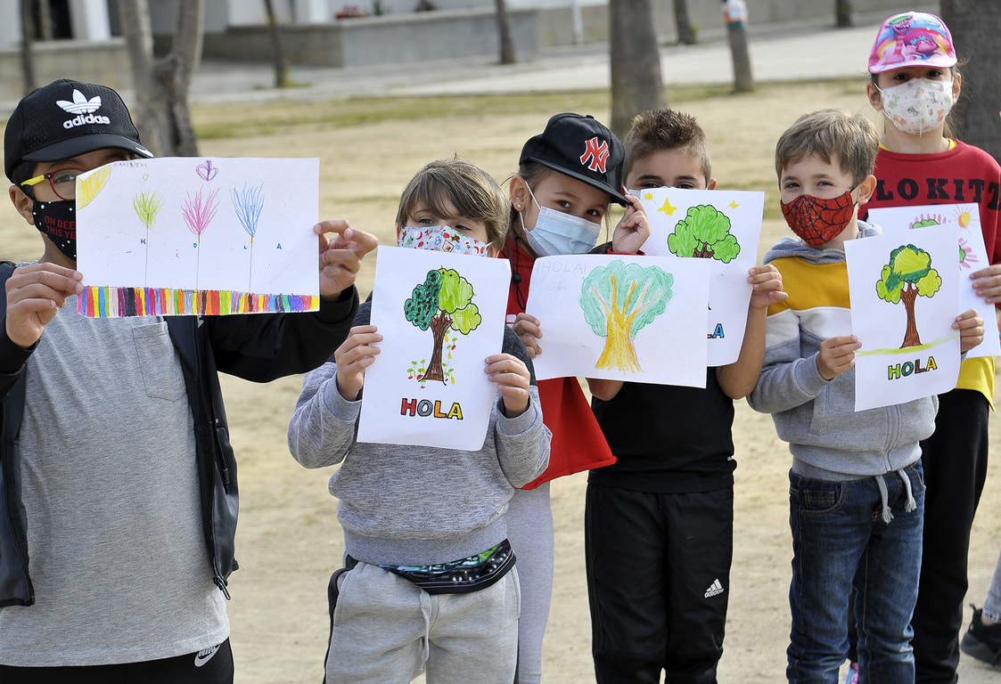 Plantación de árboles en colegios