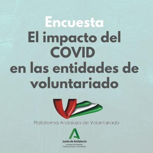 Cartel estudio EL IMPACTO DEL COVID-19 EN LAS ENTIDADES DE VOLUNTARIADO