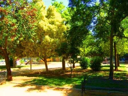 Imagen del parque 2
