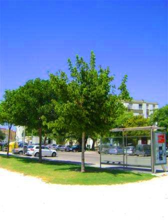 Imagen del parque
