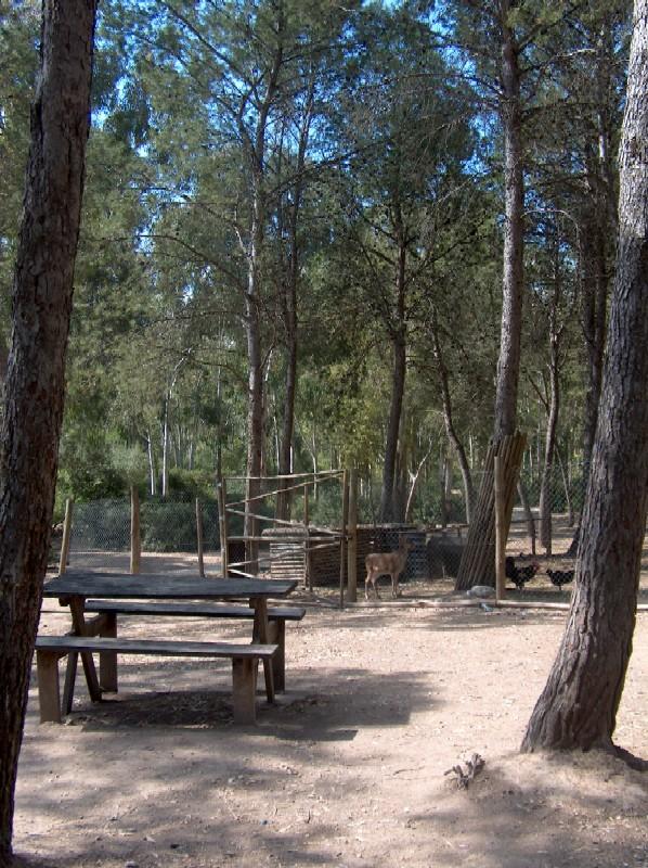 Imagen del Parque de las Aguilillas