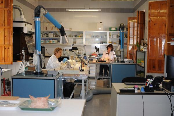 Laboratorio de restauración