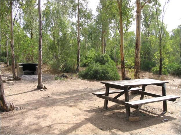 Imagen del Parque de Las Aguilillas 3