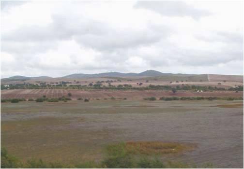 Imagen de la Laguna de los Tollos