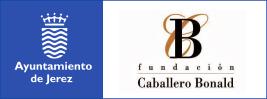 Acceso a la página de la Fundación Caballero Bonald