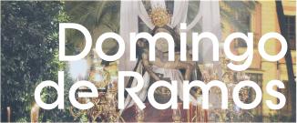 Acceso a información Domingo de Ramos