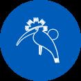 Página del zoo de Jerez